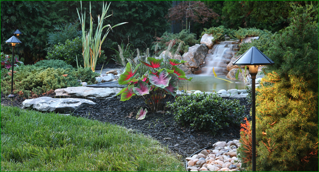 Spanos Residential & Commercial Landscaping Services