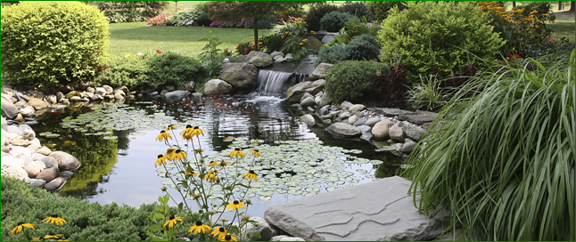 Spanos Residential & Commercial Waterscape Installations